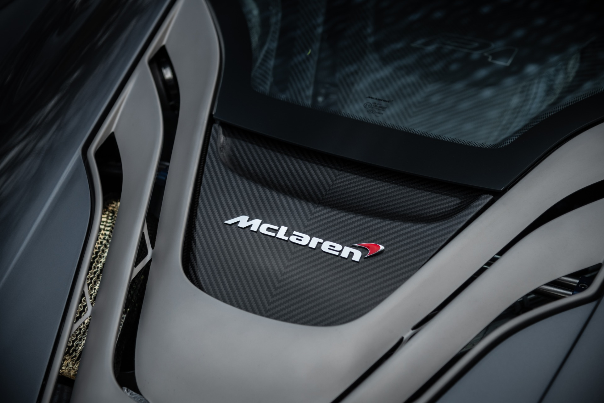 Used 2014 McLaren P1 Coupe For Sale In Westport, CT 513_p32